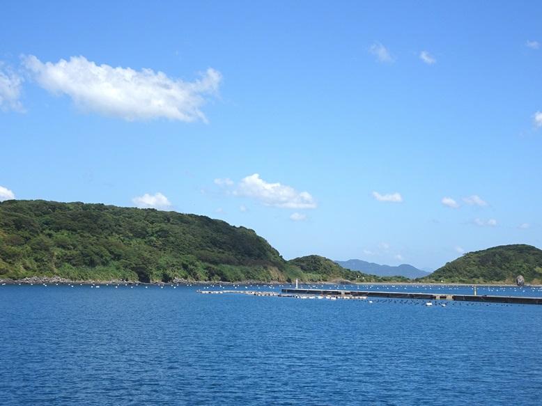 相島の真珠養殖