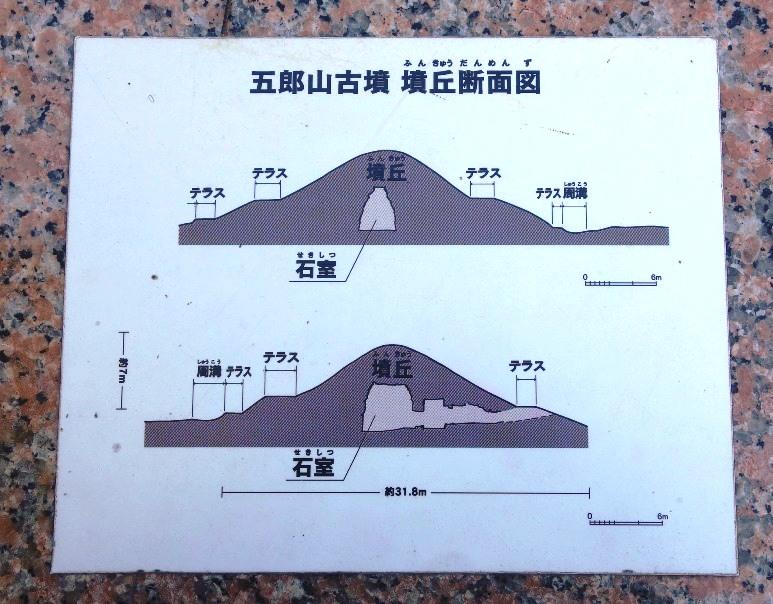 五郎山古墳墳丘断面図