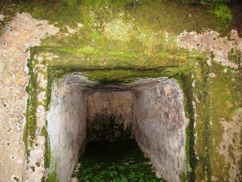 刳り抜き型の石棺式石室の様子(古宮古墳)