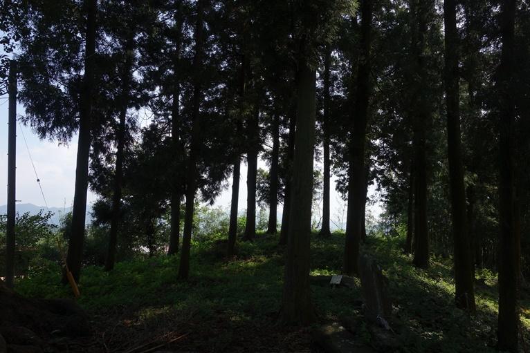 臼塚古墳墳丘から遠くの山並みを望む