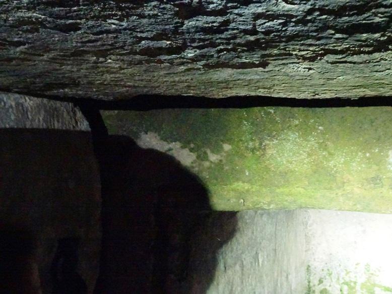 古宮古墳の岩をアップで見る