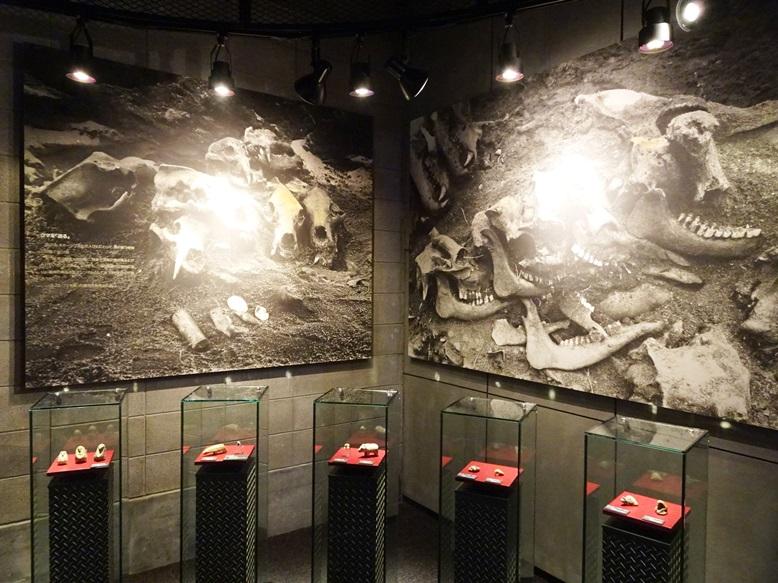 クマ頭骨の祭壇展示