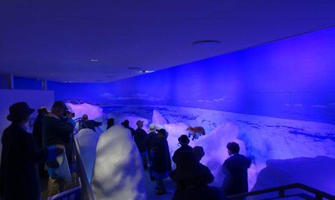 流氷体感室の内部は氷の世界
