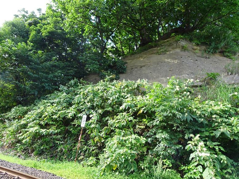 フゴッペ洞窟を裏側から見る